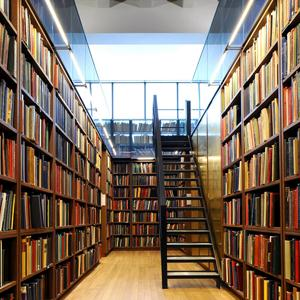 Библиотеки Каменки