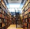 Библиотеки в Каменке
